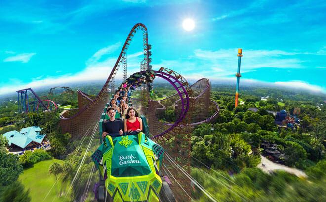 TampaBay-Park-BuschGardens-RollerCoaster
