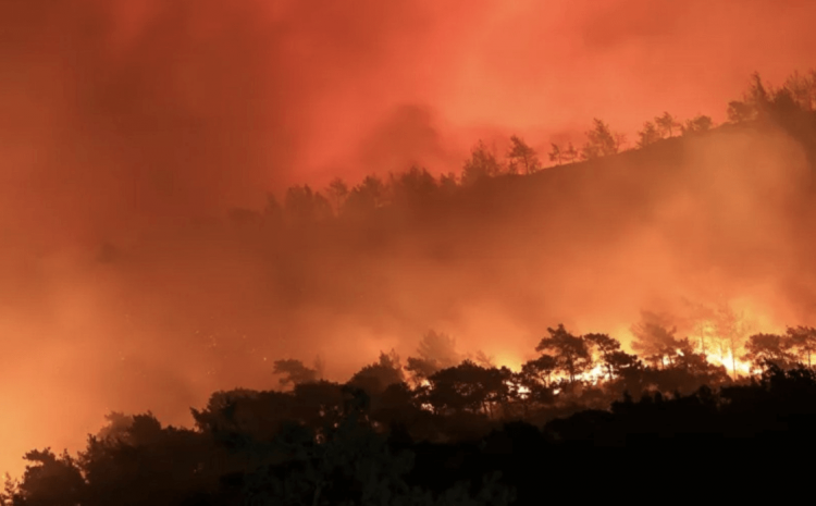 Wildfires: Helping those that are affected by the wildfires